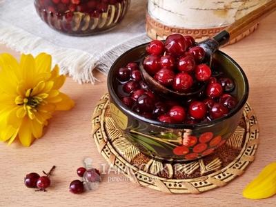 Брусника с сахаром на зиму без варки и другие заготовки из брусники по золотым рецептам