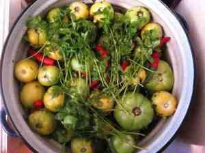 Зеленые помидоры - что с ними можно сделать