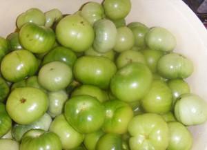 Рецепты из зеленых помидор - вкусные заготовки на зиму