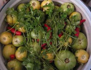 Простой рецепт засолки зелёных помидор в ведре на зиму
