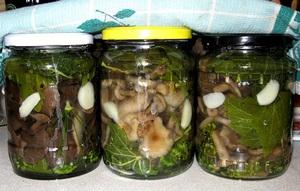 Рецепт засолки грибов с чесноком на зиму в домашних условиях