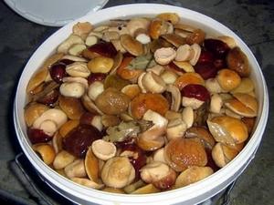 Способ засолки белых грибов на зиму