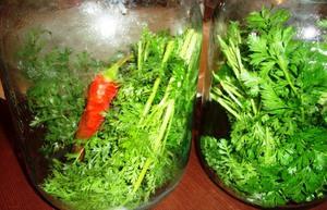 Огурцы на зиму с зеленью (морковная ботва)
