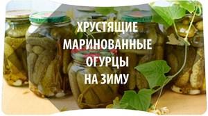 Соленые огурцы - Все рецепты России