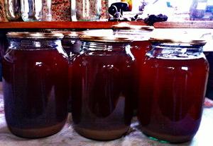Как сделать домашний виноградный сок фото 115