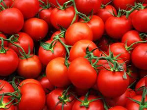 Соленые помидоры черри - быстрый и вкусный рецепт