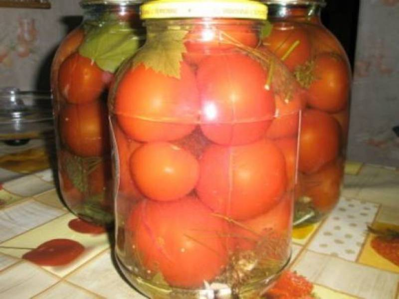 Вкусный рецепт соленых помидор с фото